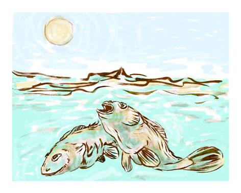ref : carte_fish2